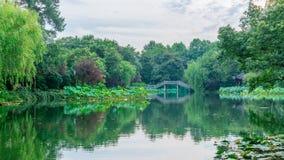 与树和桥梁的风景和反射在西湖,杭州,中国附近的水中 免版税库存照片