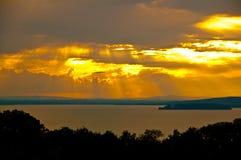 与树和湖的全景 免版税库存照片