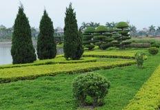 与树和花的美好的风景 免版税库存照片