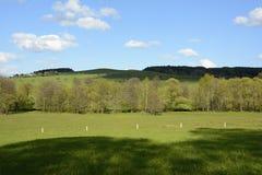 与树和草甸,捷克,欧洲的波浪风景 免版税图库摄影