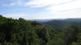 与树和蓝山山脉的风景 免版税库存照片