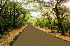 与树和路的秋天风景 免版税库存图片