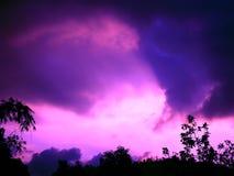 与树和雨云的紫色天空 免版税库存照片
