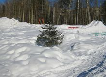 与树和雪的冬天风景 库存图片