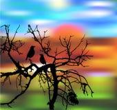 与树和鸟的秋天bakcground 免版税图库摄影