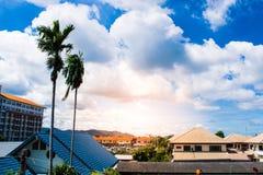 与树天空背景和自然的城市大厦 免版税库存图片