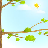 与树太阳云彩的五颜六色的自然动画片背景孩子设计的 皇族释放例证