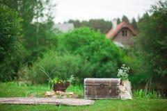 与树干和锅炉的农村风景 库存图片