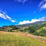 与树木丛生的小山和干草堆的美好的乡下风景在山的一个象草的农村领域的 库存照片