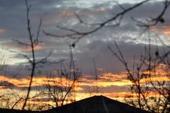 与树枝的美丽的日落天空 免版税图库摄影
