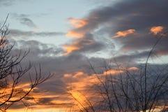 与树枝的美丽的日落天空 图库摄影