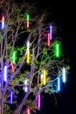 与树枝的荧光灯 库存图片