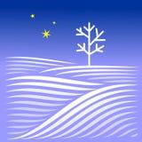 与树的农村冬天晚上风景 免版税库存照片
