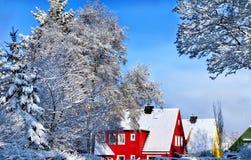 与树的冬天场面 免版税库存图片