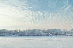 与树的冬天美丽如画的风景和冷光的冷淡的河使模糊在日落 免版税图库摄影