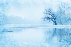 与树的冬天风景在河附近 免版税库存图片
