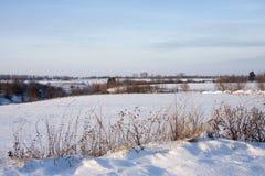 与树的冬天风景在雪和蓝天 库存照片
