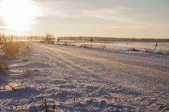 与树的冬天风景在雪和路 免版税库存照片