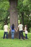与树的十几岁在公园 免版税库存图片