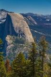 与树的半圆顶在优胜美地国家公园 免版税库存照片