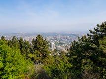 与树的城市风景在前景在一好日子 库存照片