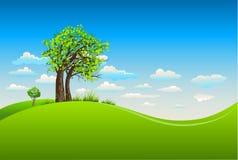 与树的夏天背景 免版税图库摄影