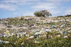 与树的小山有很多垃圾和塑料袋 库存图片