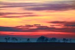与树的有薄雾的秋天日出在领域 图库摄影