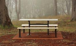 与树的有雾的公园长椅 免版税库存照片