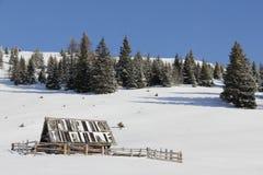 与树的村庄在金角落, Spittal,克恩顿州,奥地利的背景中在冬天 图库摄影