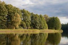 与树的湖视图 免版税库存图片