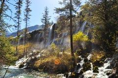 与树的瀑布在九寨沟 免版税库存照片