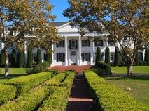 与树的白色豪宅 库存照片