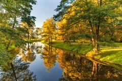 与树的秋天自然和与反射的河水 免版税库存照片