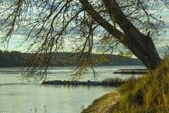 与树的秋天风景在河附近 图库摄影