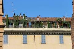 与树的美丽如画的老大厦在大阳台 库存图片