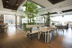 与树的美好的咖啡馆内部 免版税图库摄影