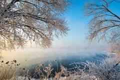 与树的雾在湖和霜 免版税库存图片