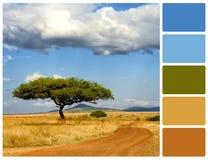 与树的风景与调色板颜色样片 免版税库存图片