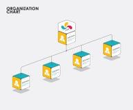 与树的组织系统图infographics,图流程 向量 库存图片