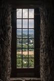 与树的滑稽的城堡在波兰 免版税图库摄影