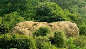 与树风景的小山岩石 免版税库存图片