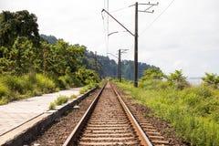 与树,农村乡下村庄小镇方式视图的铁轨有太阳光焕发夏天黄昏背景 免版税库存照片