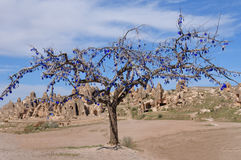 与树,卡帕多细亚的美丽如画的风景 免版税库存照片
