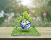 与树,美国航空航天局装备的这个图象的元素的地球 免版税库存照片