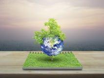 与树,美国航空航天局装备的这个图象的元素的地球 库存图片