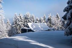与树,雪和清楚的天空的被隔绝的瑞士山中的牧人小屋在Moravskoslezske Beskydy山的Bily Kriz附近在捷克共和国 免版税库存图片