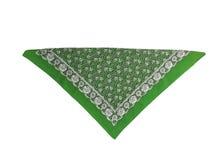 与样式的一块绿色班丹纳花绸,被隔绝 免版税图库摄影
