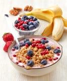 与格兰诺拉麦片和莓果的健康早餐酸奶 库存图片