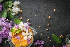 与格兰诺拉麦片,桔子,薄荷和可食的花的酸奶 免版税库存照片